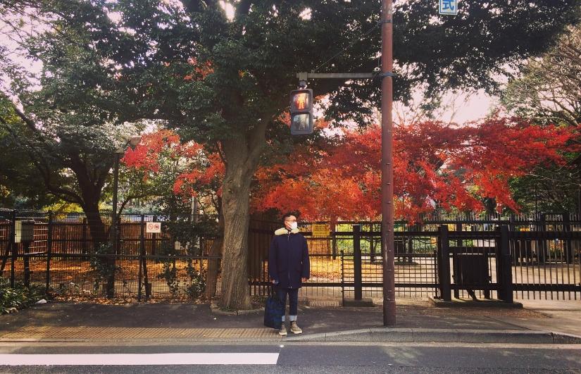 东京有木村拓哉,还有村上春树