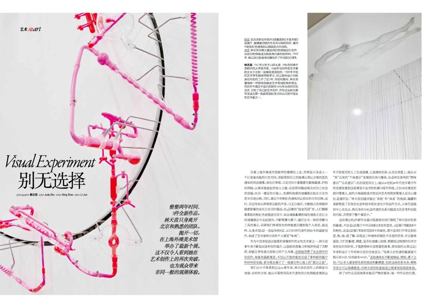 AD Lin Tianmiao final 1